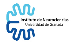 Instituto de neurociencias de la Universidad de Granada